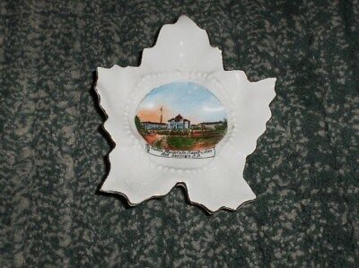 Vintage 1950s HOT SPRINGS SD SANITARIUM Leaf Shape Souvenir Trinket Dish, GUC
