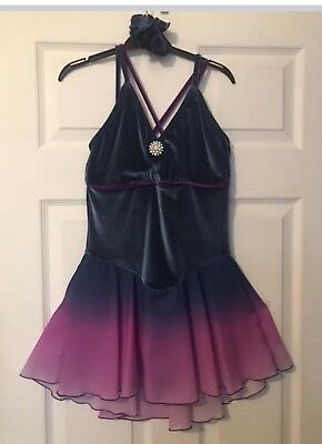 Jerrys Ice Skating Dress adult Small