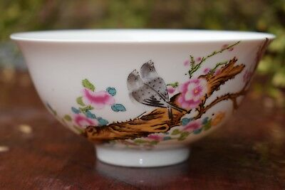 Chinese Famille Rose Porcelain Flowers and Birds Bowl with Qing Dynasty Mark