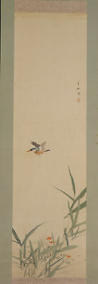"""JAPANESE HANGING SCROLL ART Painting """"Kingfisher"""" Asian antique  #E5241"""