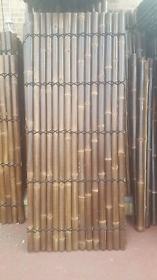 BAMBOO FENCE PANEL 2.4M x 1M - DOUBLE Lacquered Sydney NSW