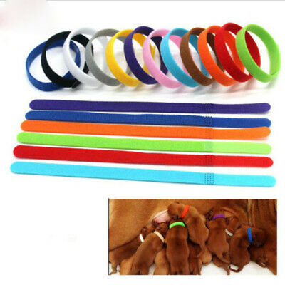 Whelping ID Collar Bands Pet Puppy Kitten Identification Collar Tags 12 Colours
