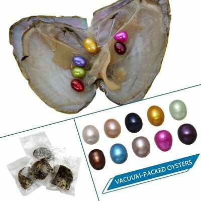 10PCS Akoya Oysters With 60PCS Pearls 5-10mm Birthday Wedding Gift For Women B4