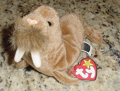 Ty Beanie Babies Paul the Walrus with Tag