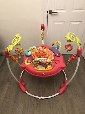 Fisher-Price Petals Jumperoo 360 Degree Baby Bouncer - Pink