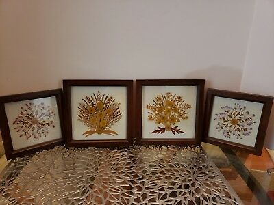 5 Dried Flower Picture Pressed Signed DEAN CHRISTENSEN CASS LAKE, MN Collage Art