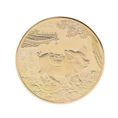 Year of the Pig Gold Plated  Chinese Zodiac Souvenir Coin Collectibles  OD