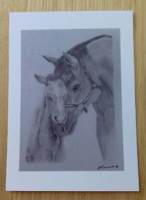 HORSE & FOAL love gift PICTURE A5 print of Original Art Drawing ANIMAL