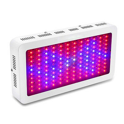 1200W 1500W 1800W 2000W LED Grow Light For Medical Plants Veg and Bloom