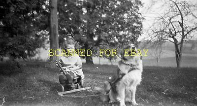 1920s Cute Young Girl with Dog Pulling Wagon ORIGINAL PHOTO NEGATIVE