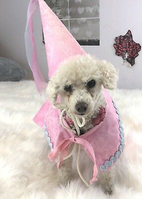 Flytes of Fancy dog pet costume Princess cape hat pink Halloween medium easy