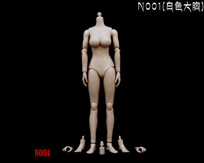 "1/6 Pale Female Action Figure Large Busts Women Body F 12"" Hot Toys Phicen Head"