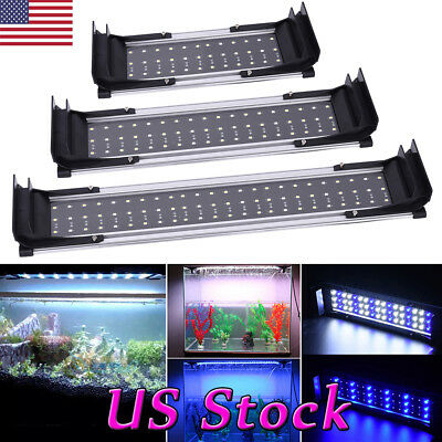 White Fashion Blue LED Aquarium Light Full Spectrum Lamp Fish Tank Lighting New