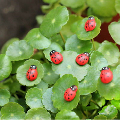 Miniature Dollhouse Fairy Garden Accessories Red color Ladybug Clay Decoration