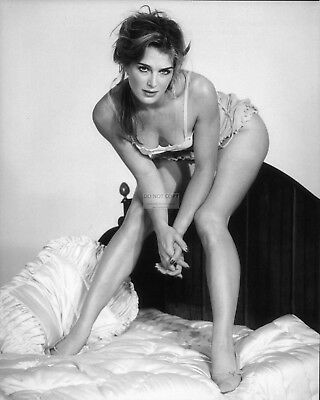 Brooke Shields Actress And Model Pin Up - 8X10 Photo (Rt432)