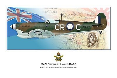 WWII WW2 RAAF MkV Spitfire Aviation Art Profile Photo Prints - FULL SET OF 3