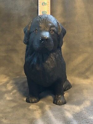 Male Newfoundland Plaster Dog Statue Hand Cast And Painted By T.c. Schoch