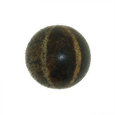 "(0526 ) Antique Opalised Palmwood ""Pumtek"" bead, Burma"