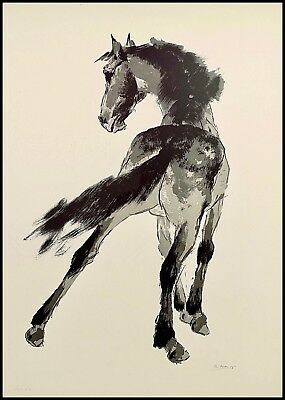 RICARDO ARENYS Vintage Lithograph Hand Signed Print S/N COA 1963 Spanish Horse