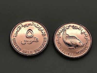UAE United Arab Emirates 2018 UNC Five 5 Fils Circulation Coin New Release