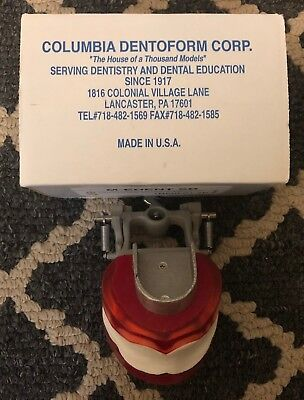Edentulous Typodont With Bushings/Adaptor Box Plate - Columbia Dentoform