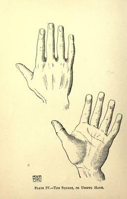 ebooks, 35 of Palmistry Chiromancy, in pdf ebooks, interesting reading on disc