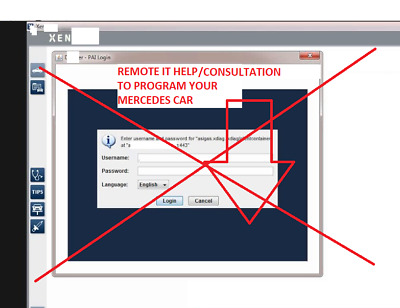 Mercedes Online Xentry SCN coding LOGIN entry ONE TIME TeamViewer - EU time zone