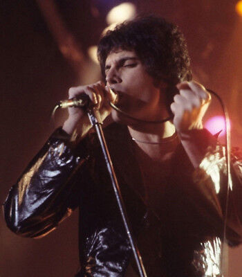 Freddie Mercury UNSIGNED photograph - Lead singer with Queen - M9265