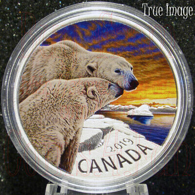 2019 Canadian Fauna #1 The Polar Bear $20 1 OZ Pure Silver Coloured Coin Canada