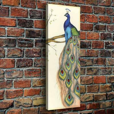 Beaut Peacock HD Canvas Print Painting Home Decor room Wall Art Picture 119214