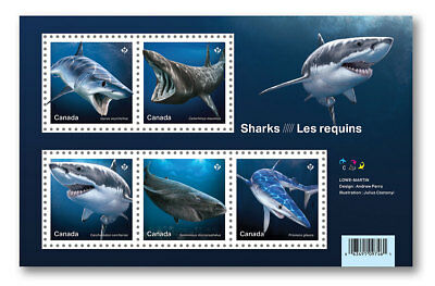 2018 Canada Sharks Souvenir Sheet 5 Stamps Science Sc # 3105 Predator Jaws Fish