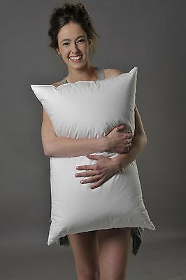 Standard Size Soft Pillow 95% White Hungarian Mother Goose Down 800 Fill Power