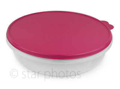 "Tupperware Classic 12"" Round Pie and Cupcake Container with Vineyard Seal - NEW!"