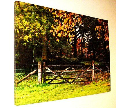 JOB LOT  12 x Large Canvas Wall Art UK Countryside Tree & Gate Scene 50cm x 70cm