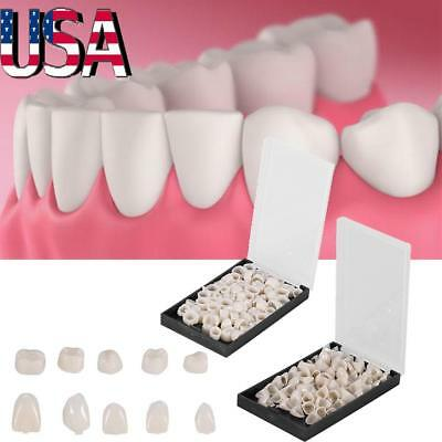 Dentistry Oral Dental Temporary Posterior Anterior Teeth Crown Molar Crown Tooth