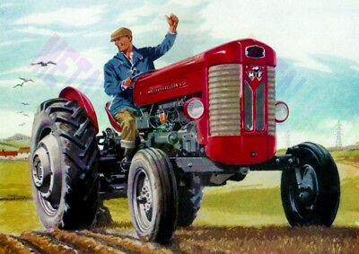 Massey Ferguson 65 Tractor - Advertising - Poster (A3) - NEW