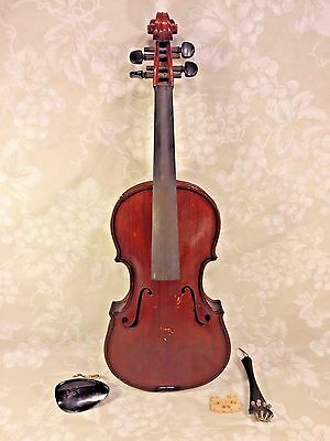 Antique Violin Oak Back No Maker Label Quite Heavy Dark Red Brown Stain w/ Case