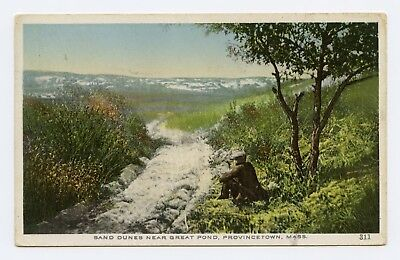 Sand Dunes near Great Pond, Provincetown, MA Color Postcard