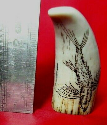 """The Flying Fish"" Engraved by Jon Adams Miniature Faux Scrimshaw Tooth"