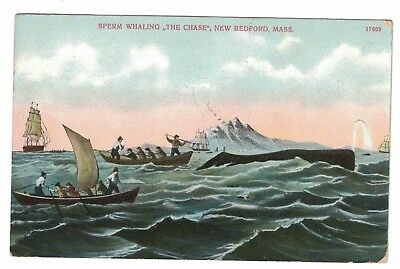 Sperm Whaling The Chase New Bedford Mass. Original Postcard 1908