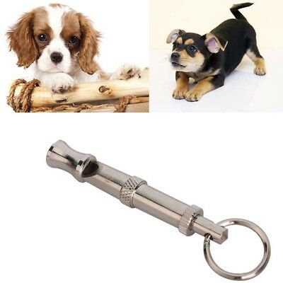 1pcs Dog Whistle to Stop Barking Bark Control Dogs Training Deterrent Whistle *