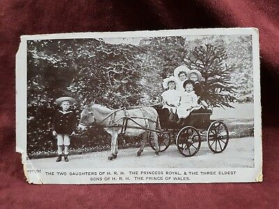 Photo Postcard Post Card Sons & Daughters Princess & Prince Of Wales
