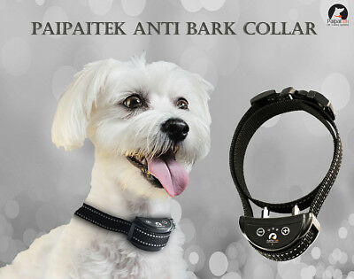 Reflective Belt Shock Paipaitek Dog Anti Bark Collar Automatic Rechargeable Tool