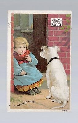 Vintage Victorian Trade Card. Pyle's Pearline For Cleaning. New York