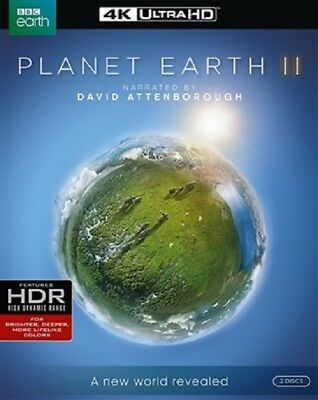 Planet Earth II Disc 2 4K UHD 4K (used) Blu-ray Only Disc Please Read