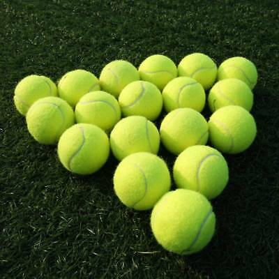 High Elasticity Used Tennis Balls Sports Games Play Cricket Pet Dog Training Toy