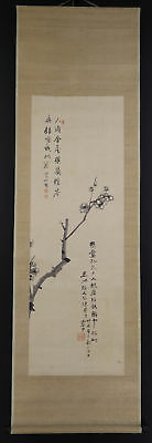 "JAPANESE HANGING SCROLL ART Painting ""Plum tree"" Asian antique  #E5736"
