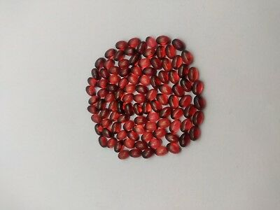 10 Pieces Natural Untteated Pyrope Garnet 4×6 MM Flawless Gemstones Lot