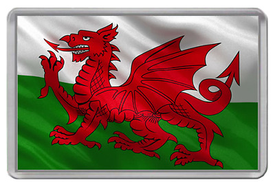 Wales  Fridge Magnet  Support Your Country