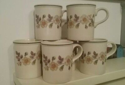 Hornsea Marks & Spencer Autumn Leaves Set of 6 Mugs